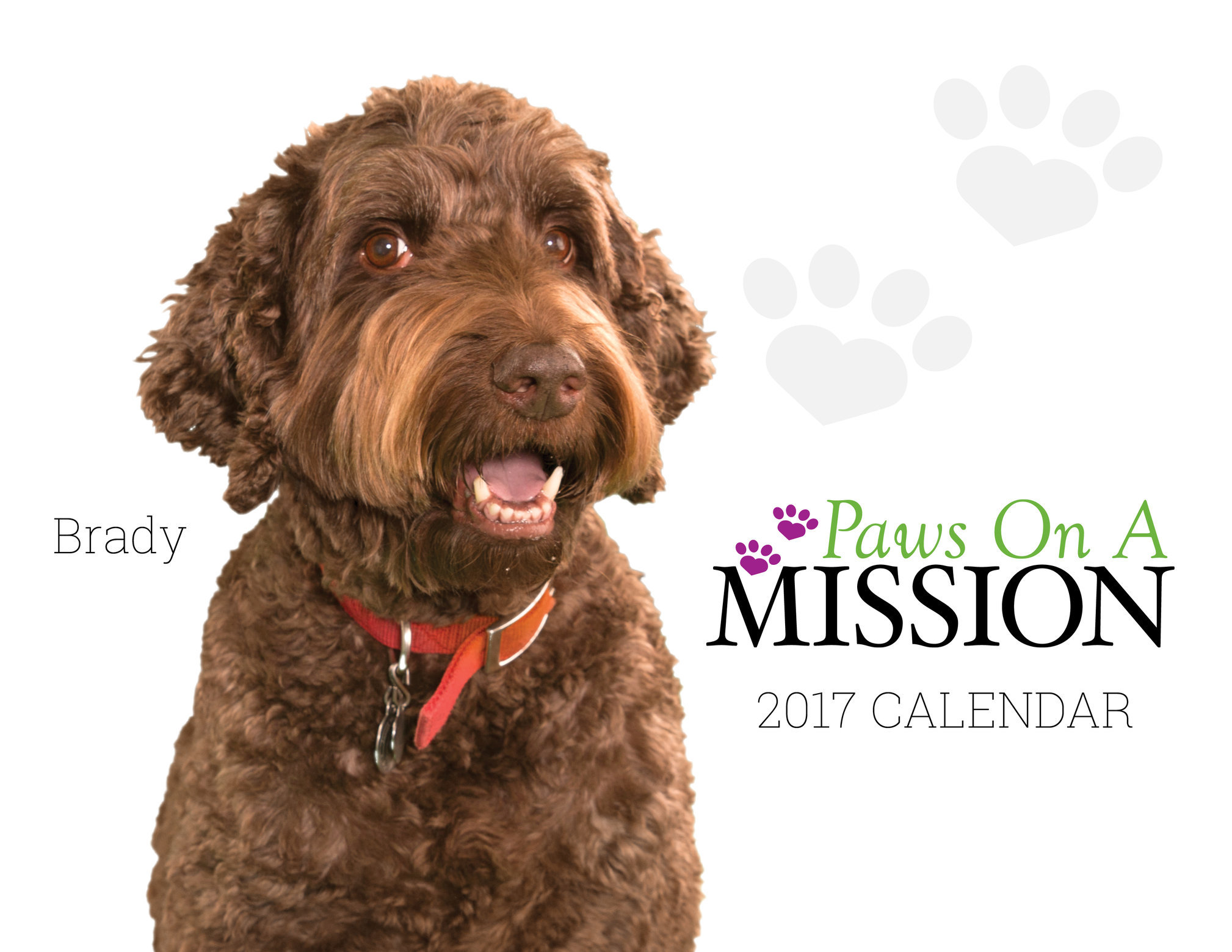PHIL2 - Pet Therapy Calendar.jpg