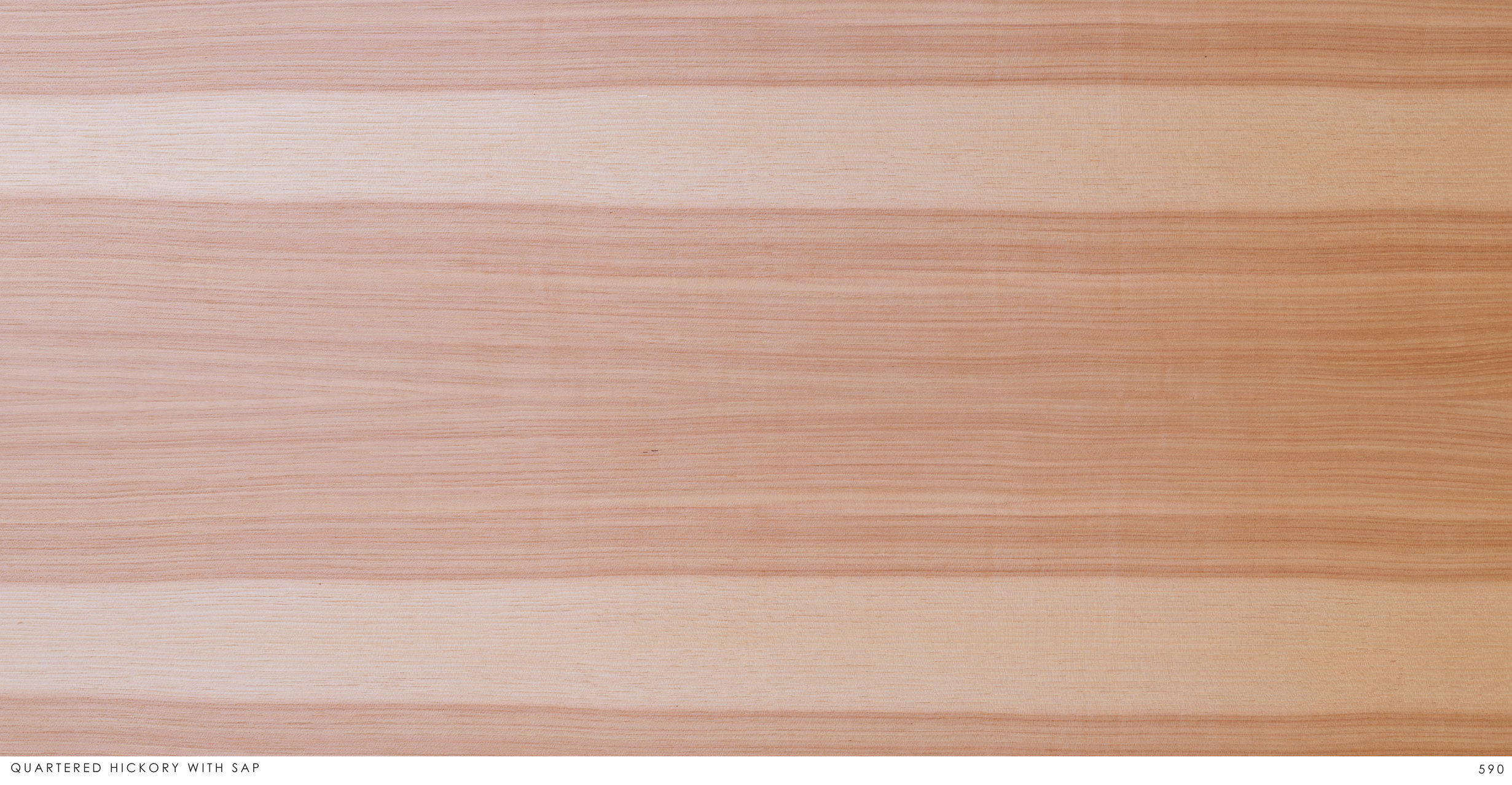 QUARTERED HICKORY WITH SAP 590.jpg