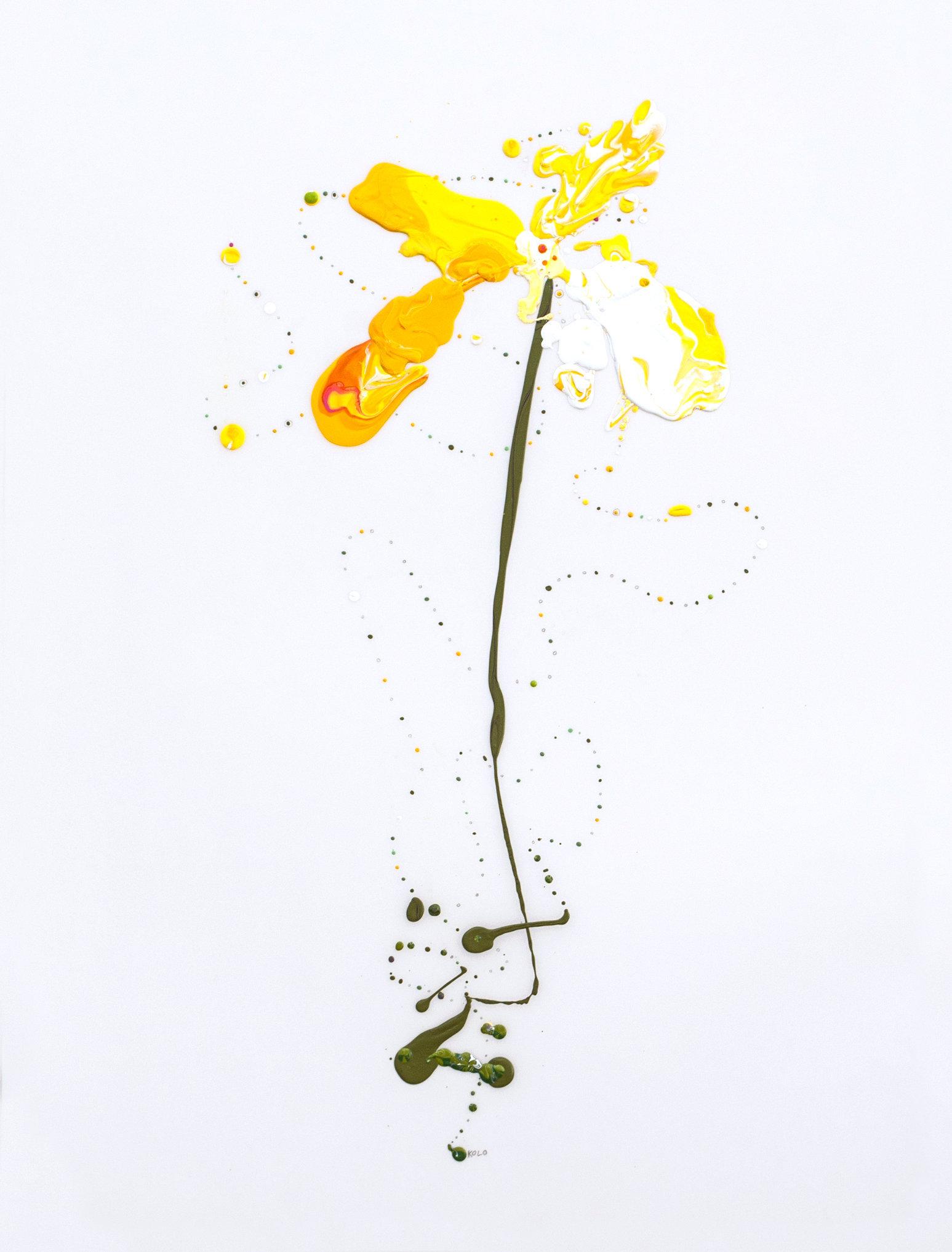 Flora XXIV