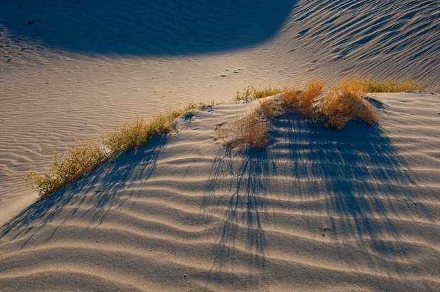 Death Valley-0629.jpg