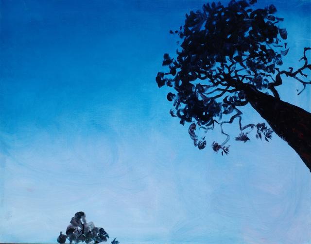"Ponderosa Pines, New Mexico, 22 x 28"""