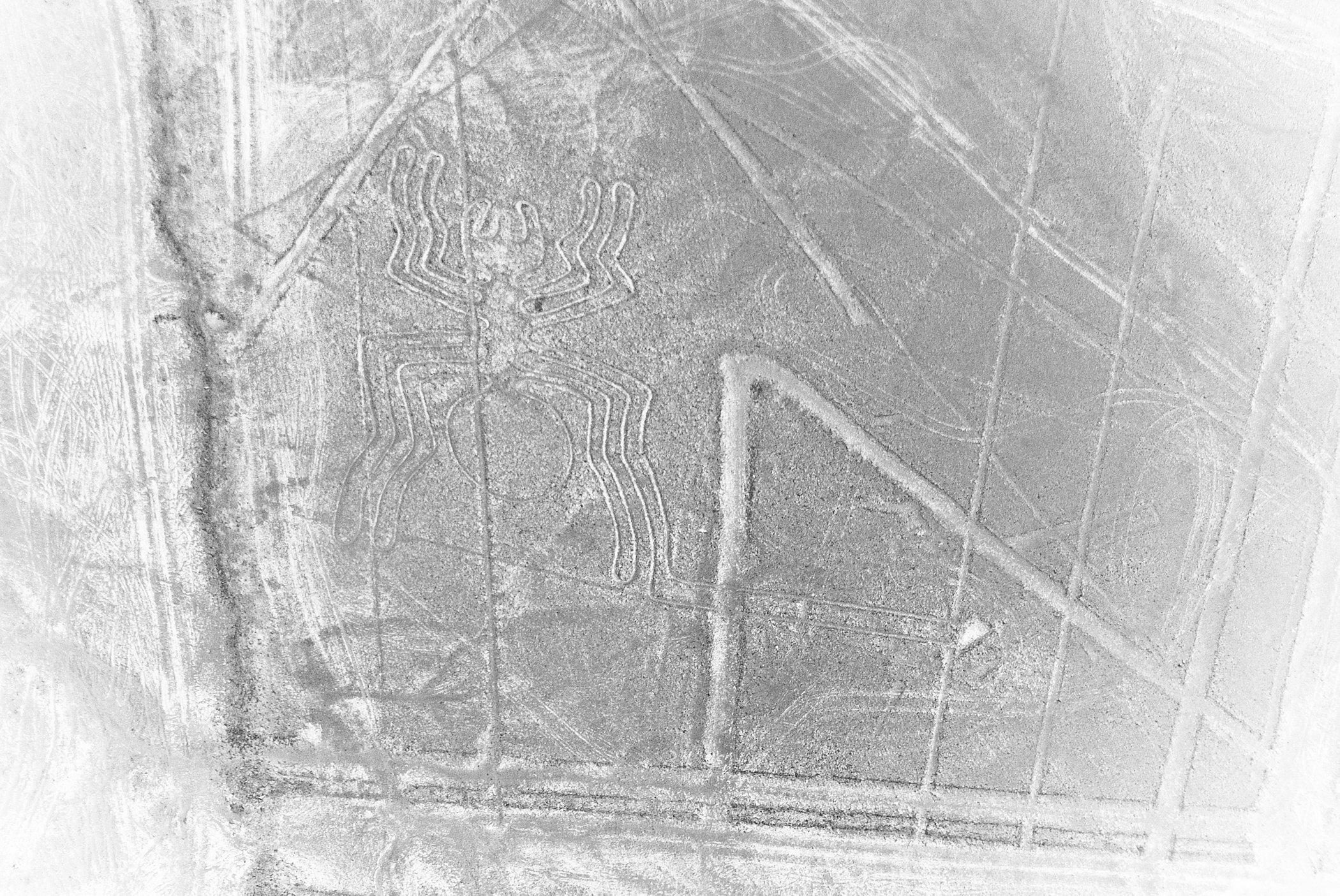 Nazca Lines 1