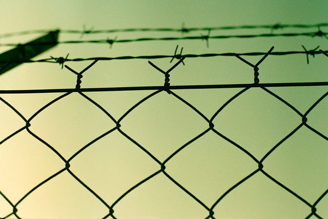 Fence copy.jpg