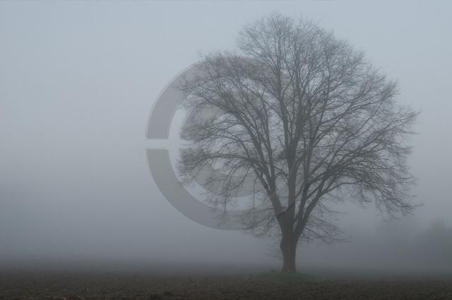 Landschaften-7.jpg