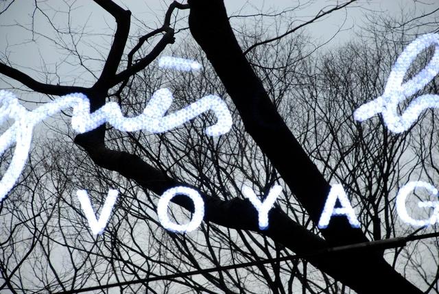 Ton van Bragt: Forest of Omotosando