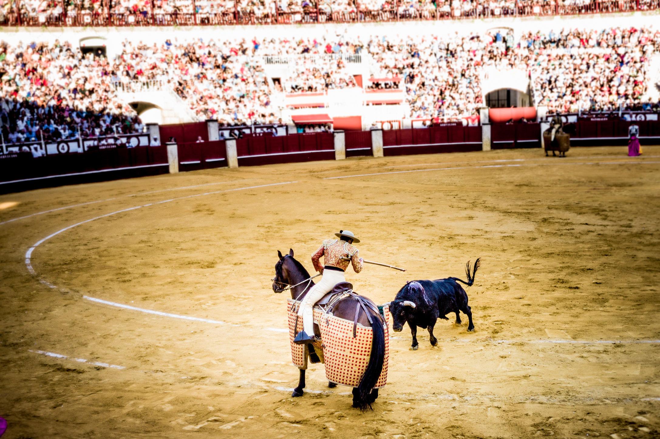 The Bullfight-87.jpg