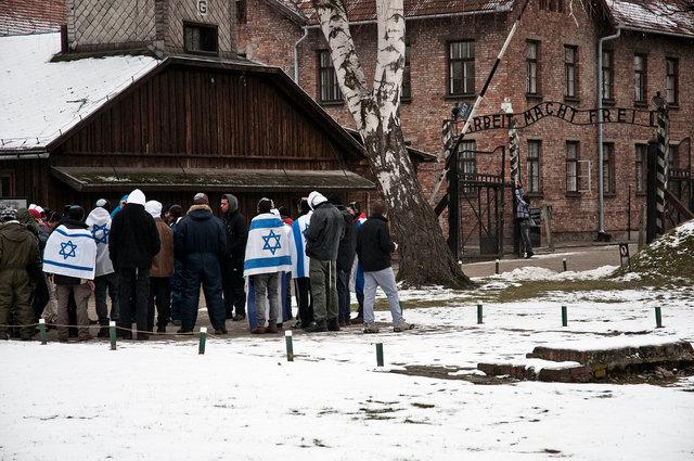 Auschwitz 2013