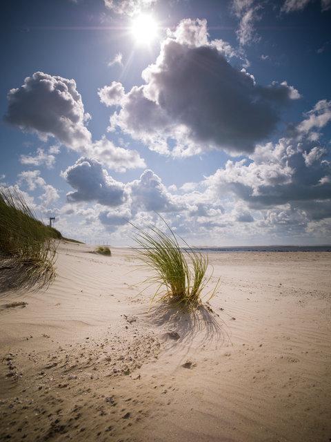 Maasvlakte-003.jpg