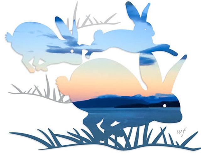 rabbit-01cd.jpg