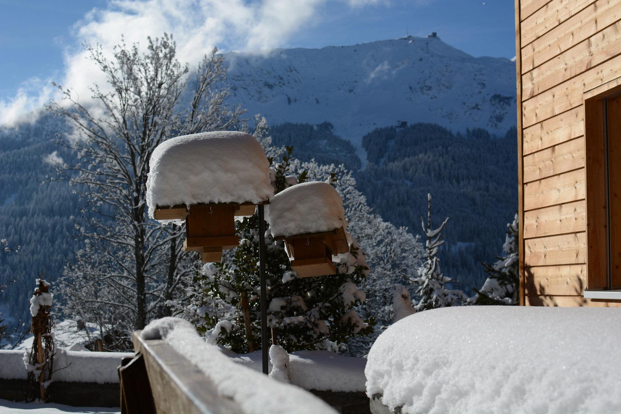 Chalet-Fuechsli-Klosters-Winter-9.JPG