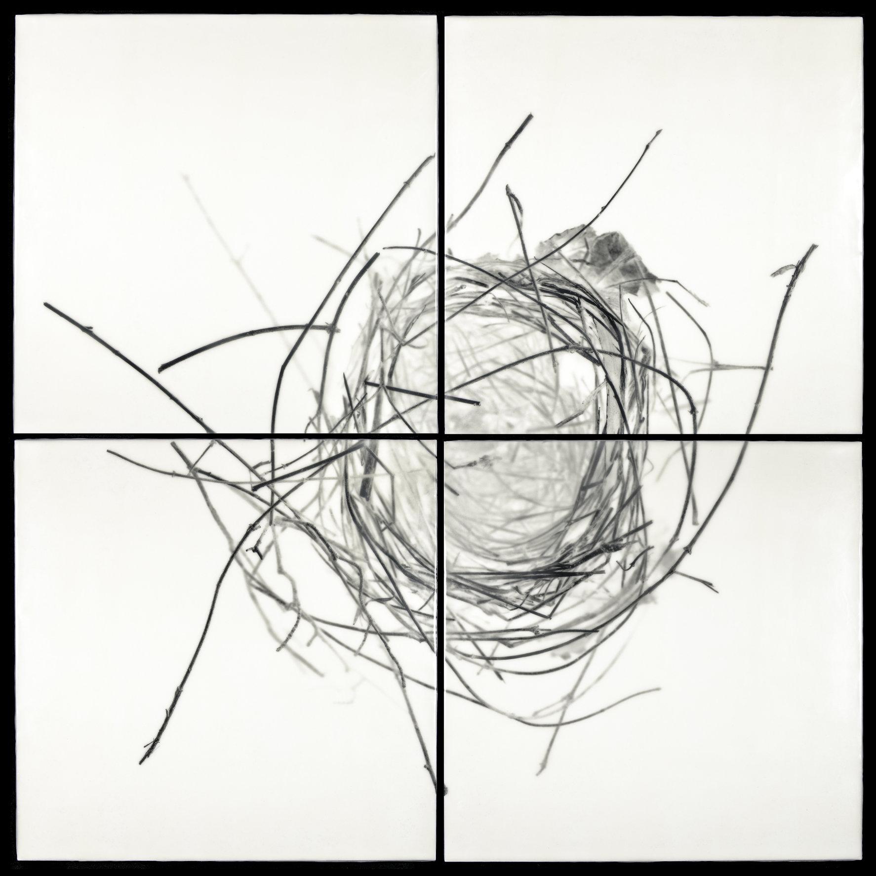 Nest XVIII