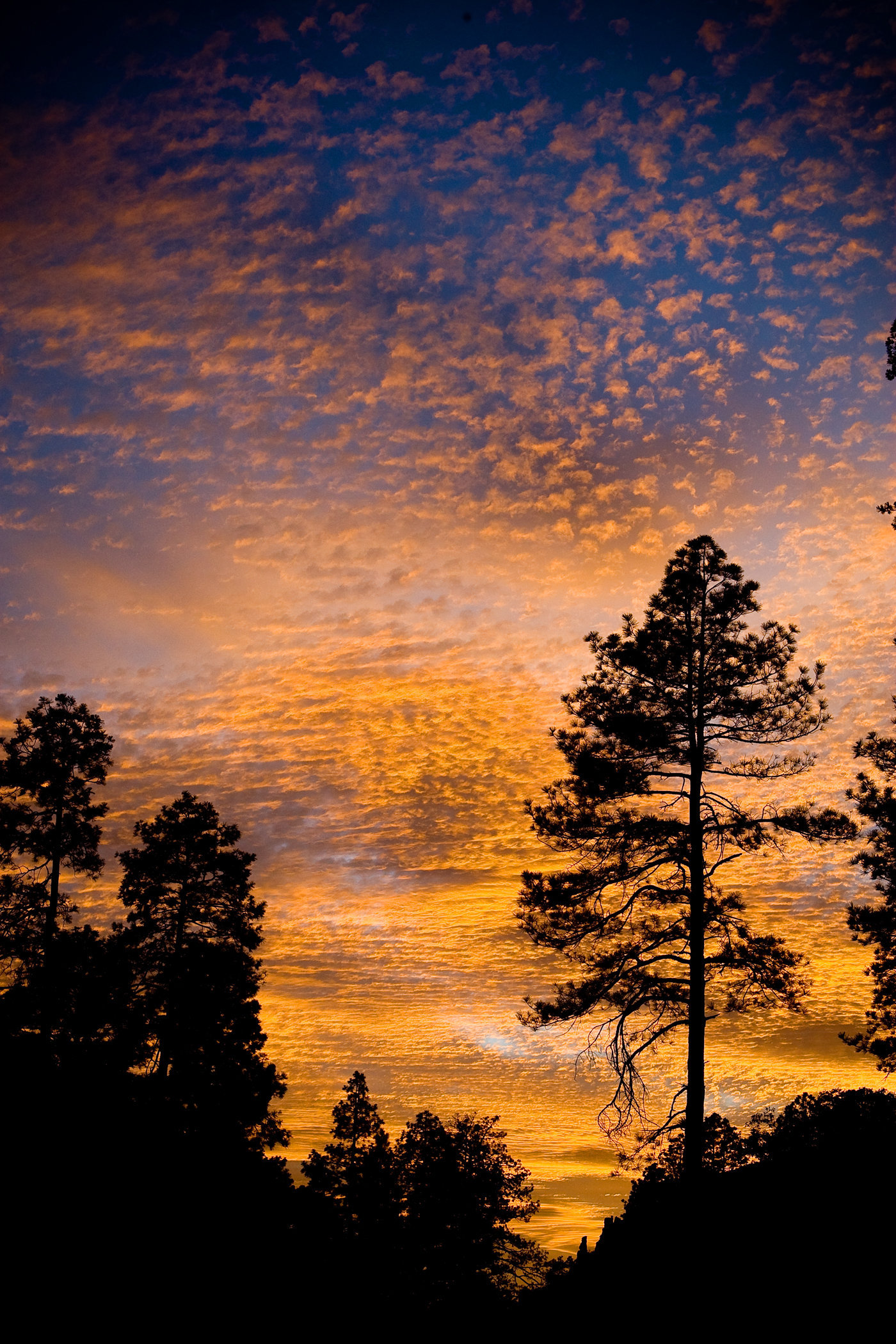 Mt. Lemmon Sunset