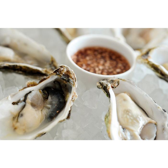 015_oysters.jpg