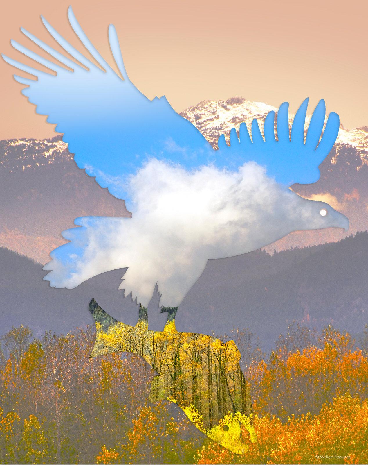 eagle-salmon-02-poster (1).jpg