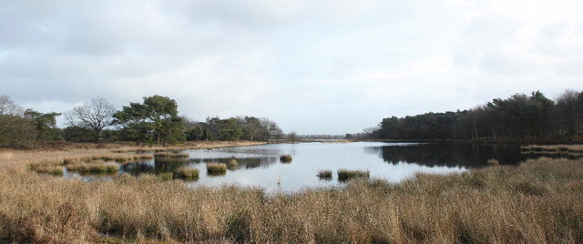 nationaal park dwingelerveld - terhorsterzand