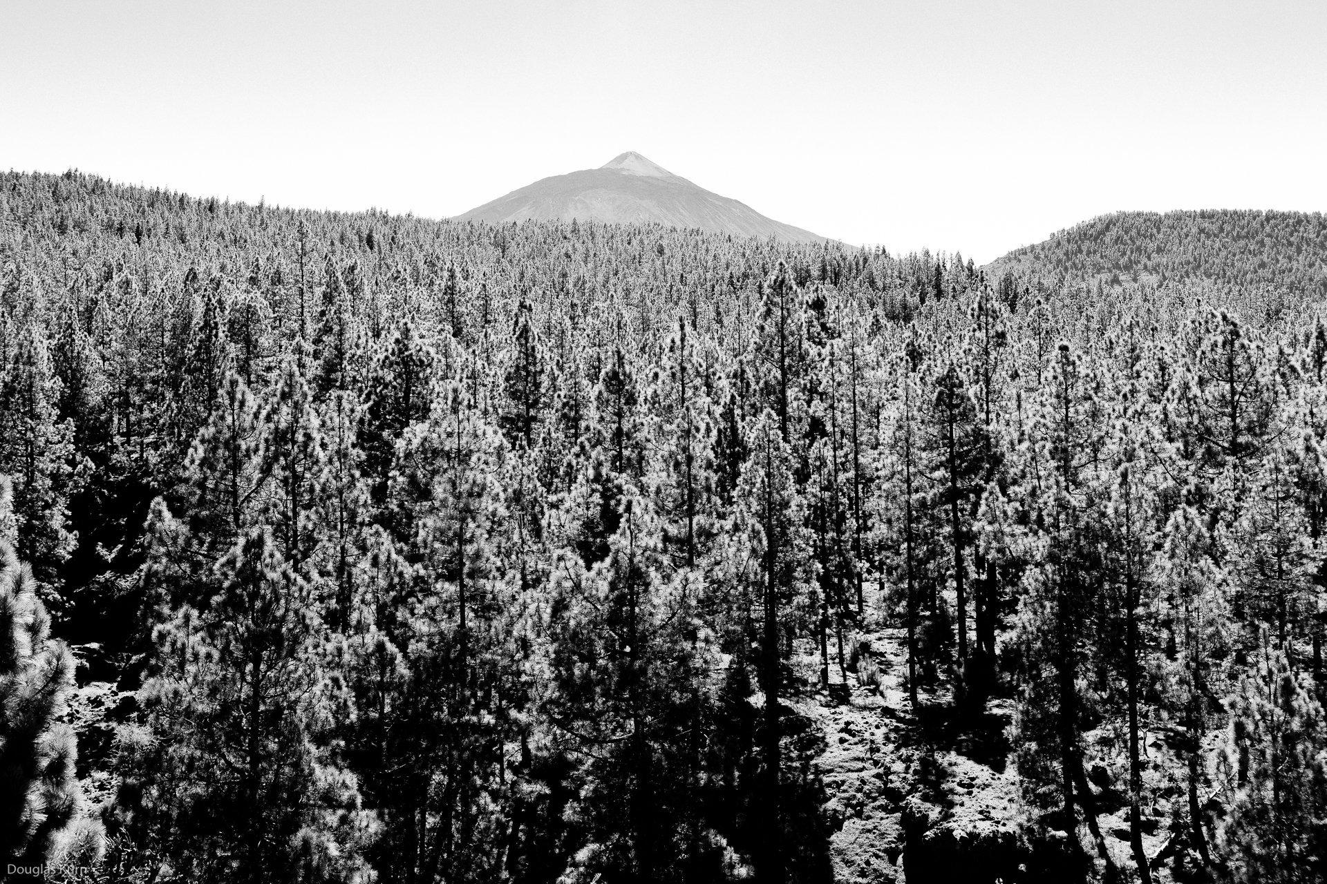 El Teide 1