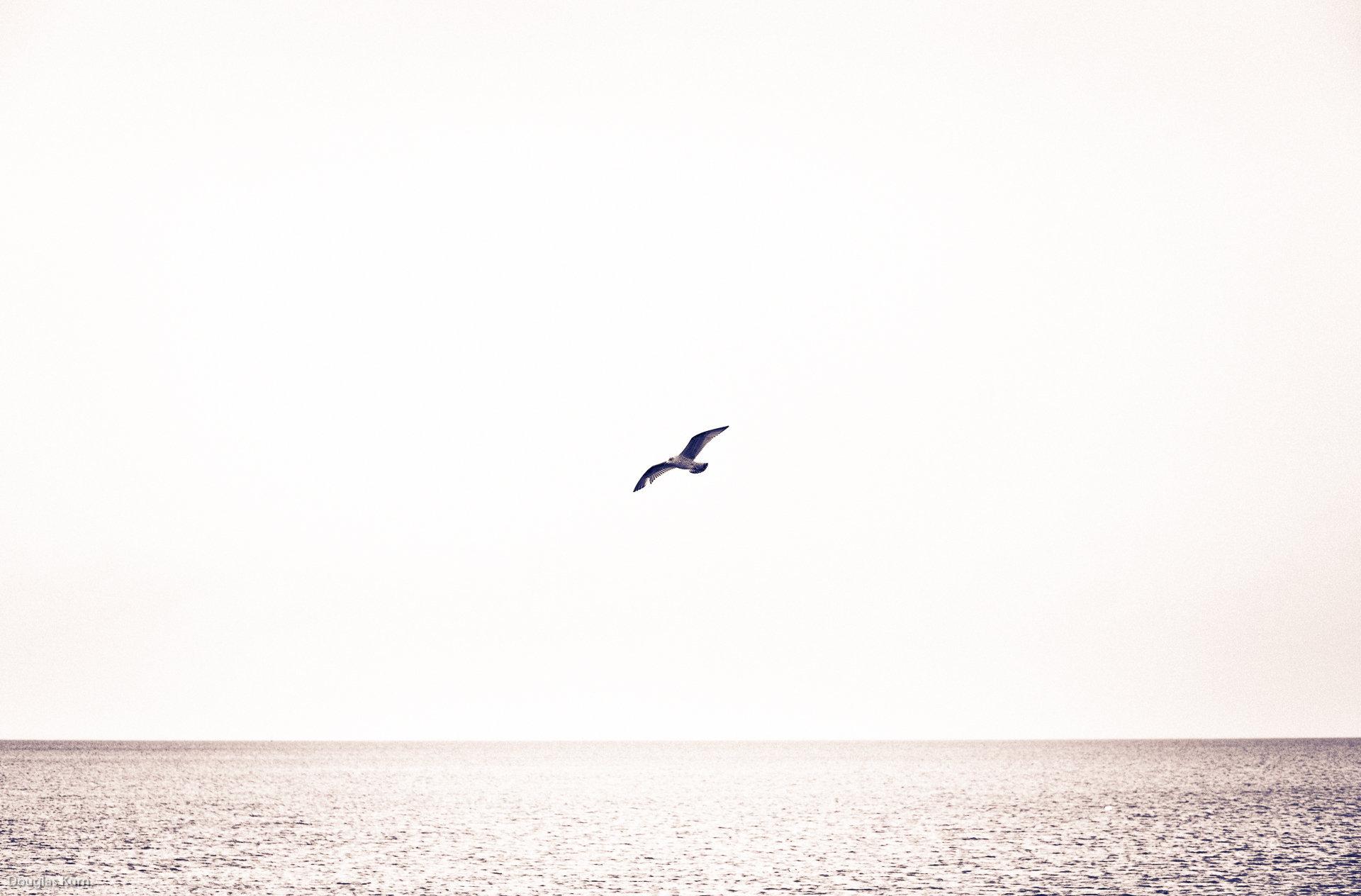 In flight, Skerries