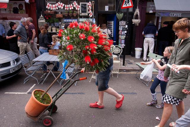 londoncolroadredflowerstrolley.jpg