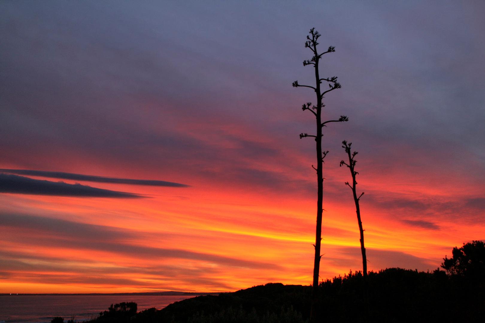 Sunset Pt Lonsdale (5)WG.jpg
