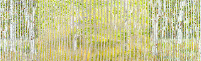 27.-Eucalypt-Forest-Clearing.-2013.-Acrylic-and-nylon-thread-on-canvas,-49cmH-x-154cmW.-Catherine-Holmes-a-Court-Mather-Collection.jpg