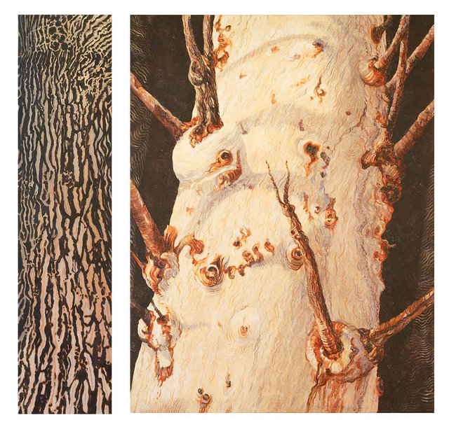 9.-Big-Tree-Yearning-in-Jaburara-Country-#1-2005.-Diptych,-acrylic-on-canvas.-Overall-size-130cmH-x-134cmW.-Collection-of-the-artist.jpg