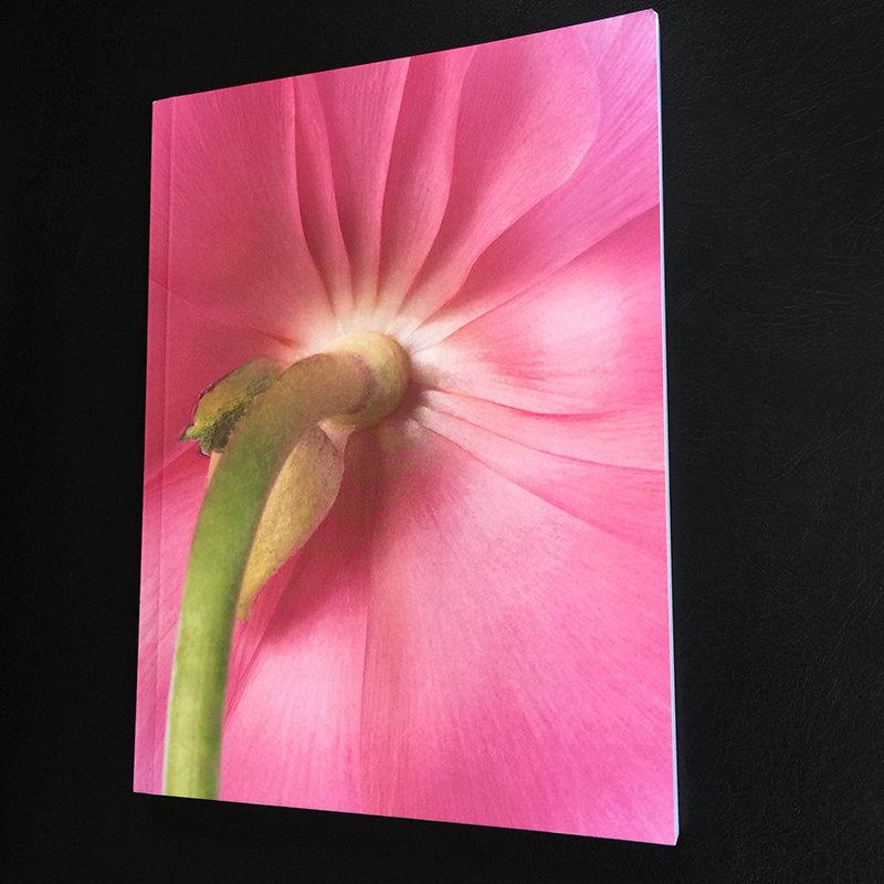 800 Pink Notebook _6646.jpg