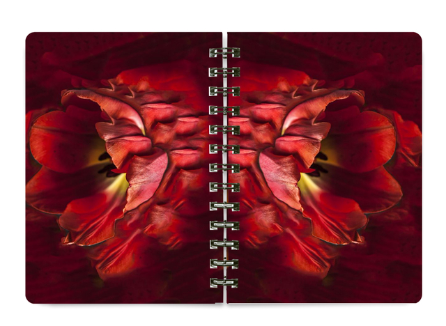 NEW 5x7 Spiral Notebook #NB05 BEST SELLER
