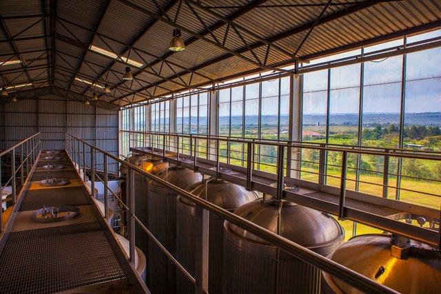 A brewerywith a view in Naivasha Kenya