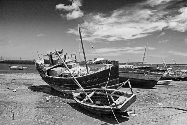 Lamu 111107ALI_2200 1.jpg
