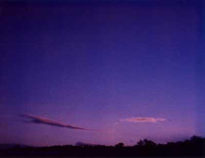 Purple Sunset 3 by Alison Gracie