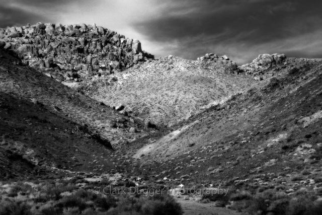 Lone_Pine-1541-Edit.jpg