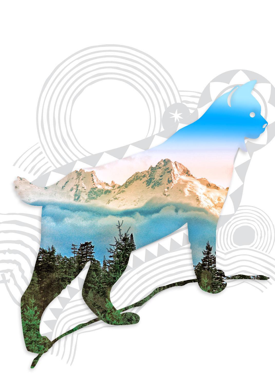 Big-cat-03m.jpg