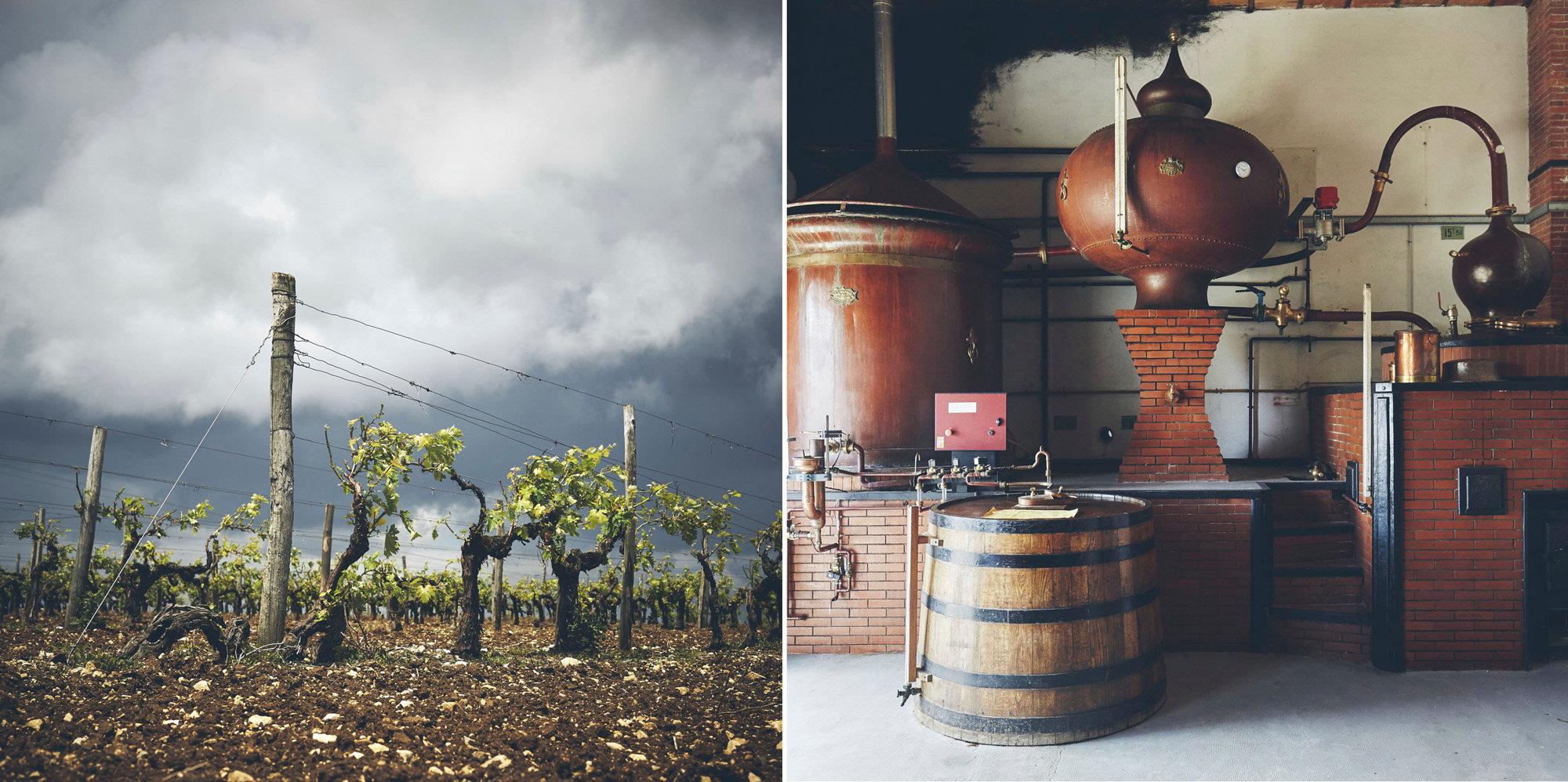 Landier - Cognac