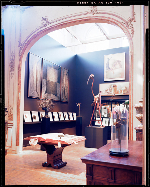 """""""Le Cabinet de Curiosites"""" by Thierry W. Despont"""