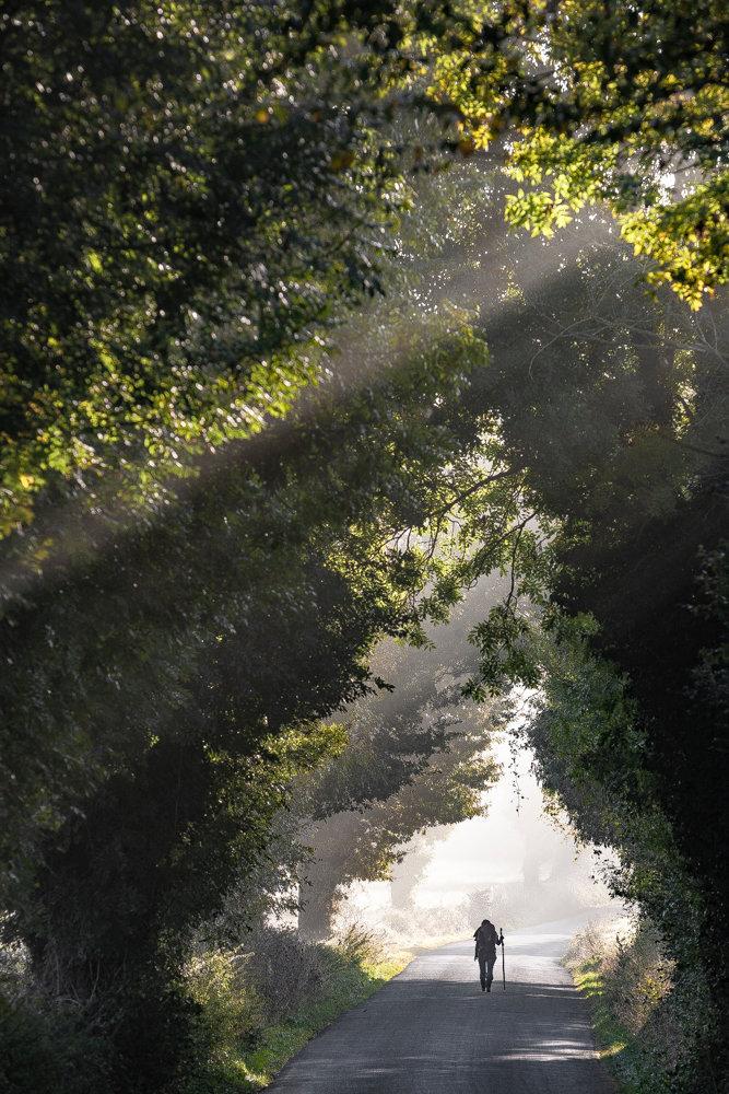 20081010-_MG_2177.jpg