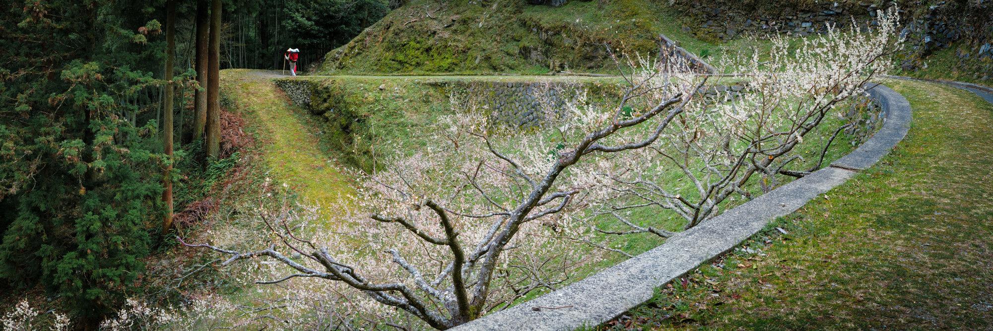 jp_16-03-18_ 220-Panorama.jpg
