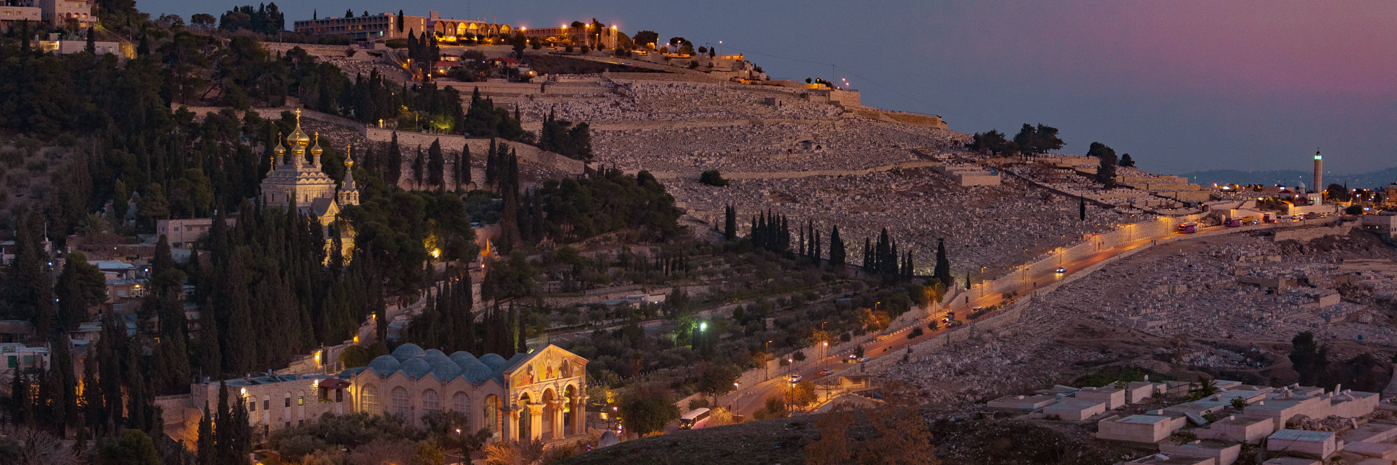 Israël Palestine, Jérusalem, Est, mont des Oliviers, Gethsémanie, les jardins des sanctuaires chrétiens s'élèvent au milieu des tombes du cimetière juif.