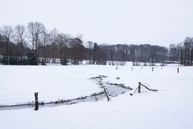 Beekdal in winter 2009/2010