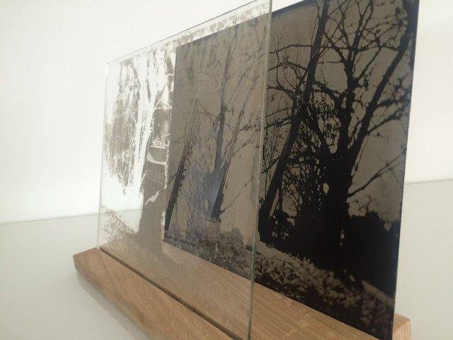 Installation-VERDUN IN MEMORIAM-collodion-006.JPG