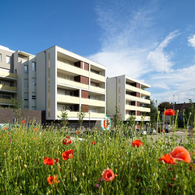 Programme Inside de Bouygues Immobilier - Strasbourg 2018
