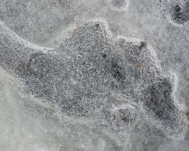 iceweb.tif