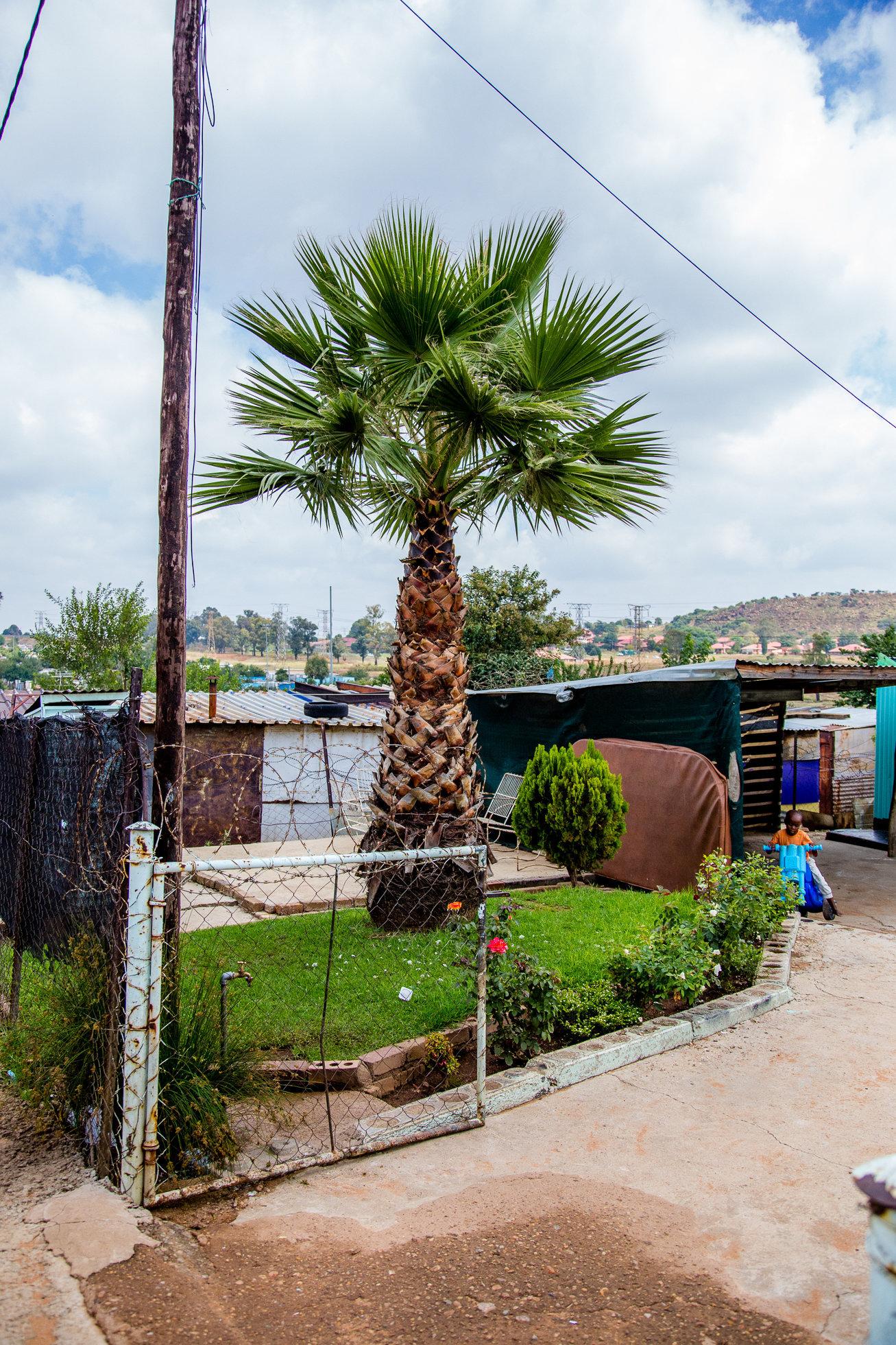 Soweto Street Stories-0205.jpg