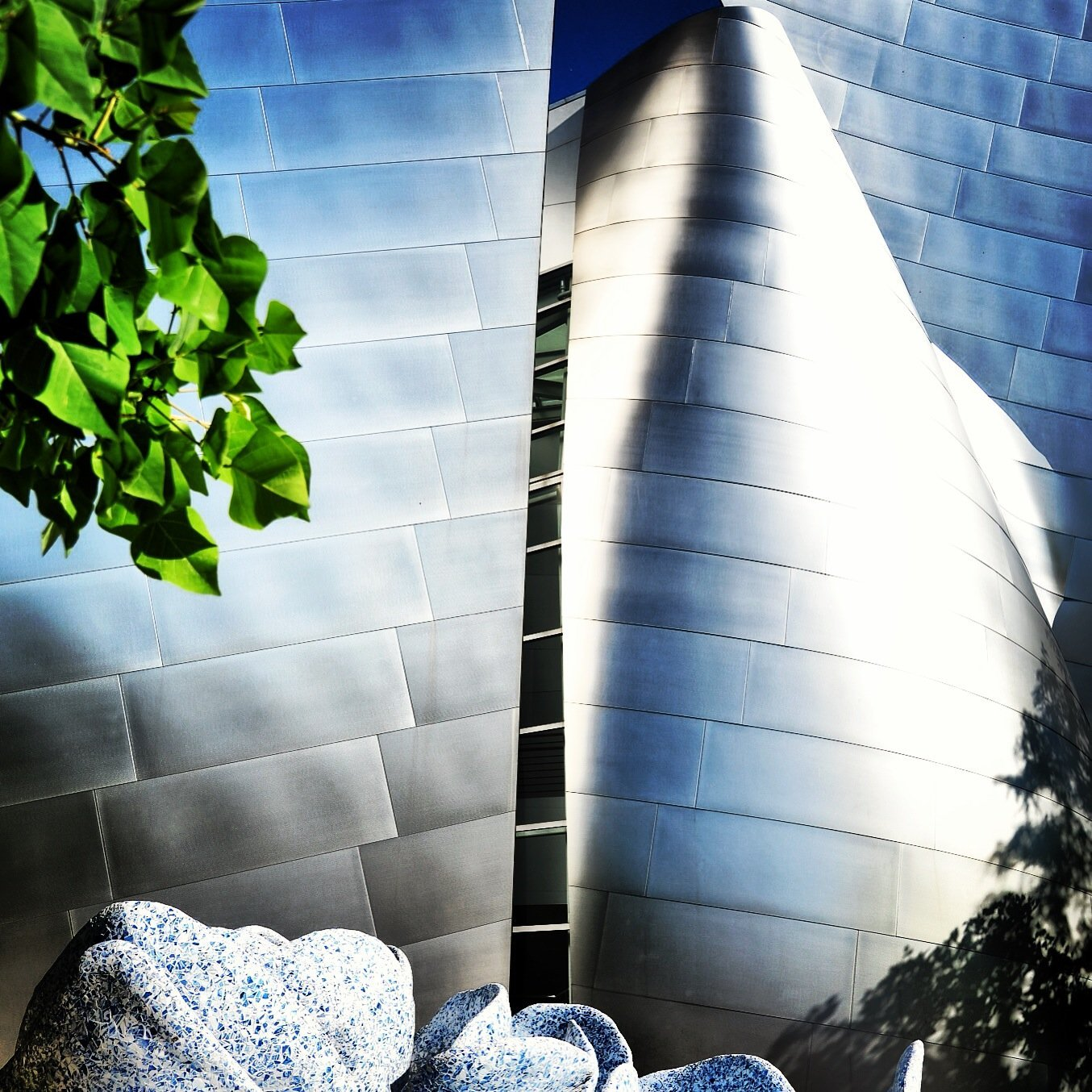 WALT DISNEY CONCERT HALL - WATER 1
