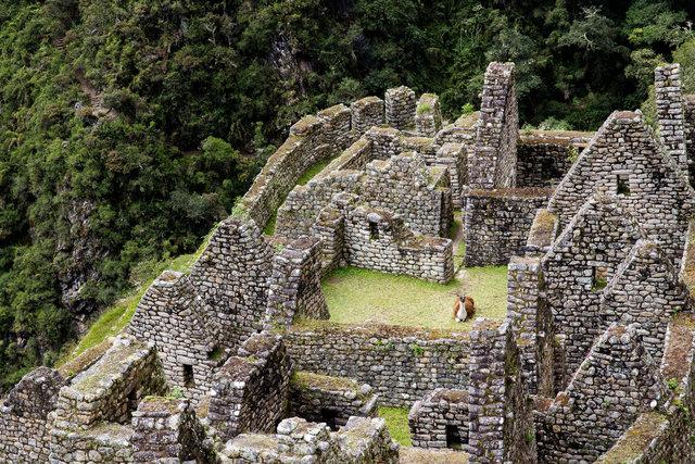 150415_Peru-0796.jpg