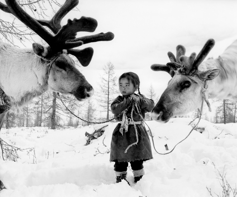 Tool holding two reindeer © Jeroen Toirkens