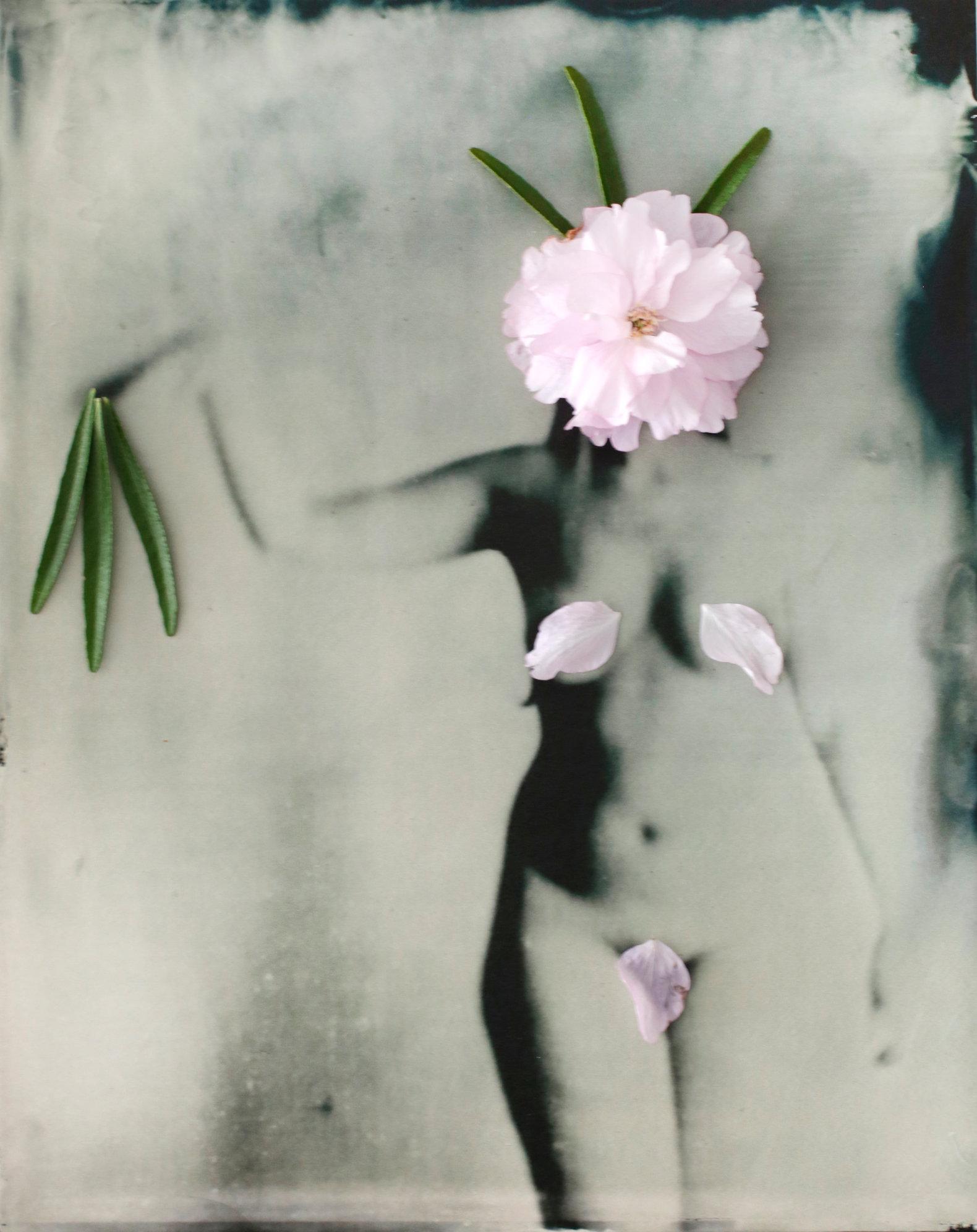FLOWERS_1_023.JPG