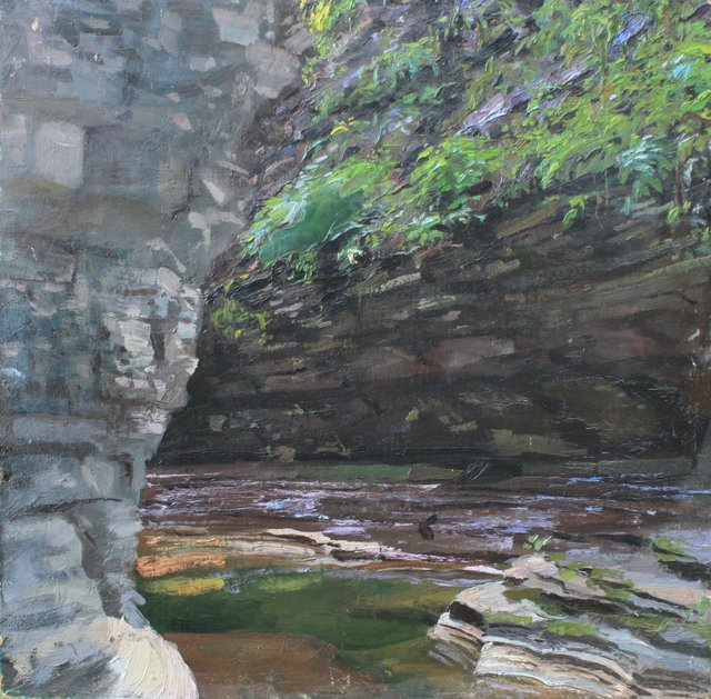 Watkins Glen Succulents     26 x 26""