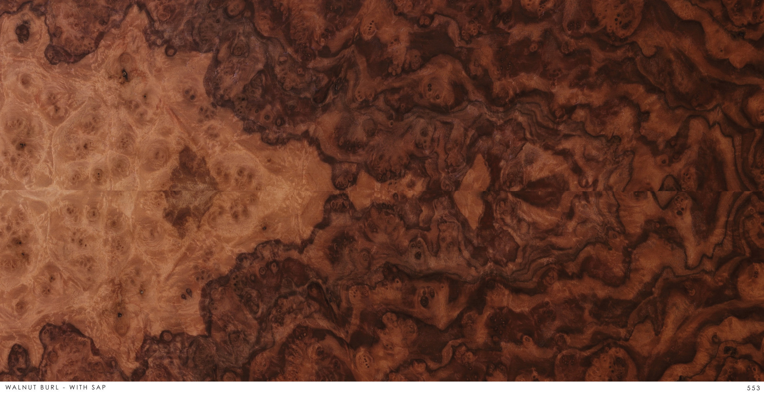 WALNUT BURL - WITH SAP 553.jpg