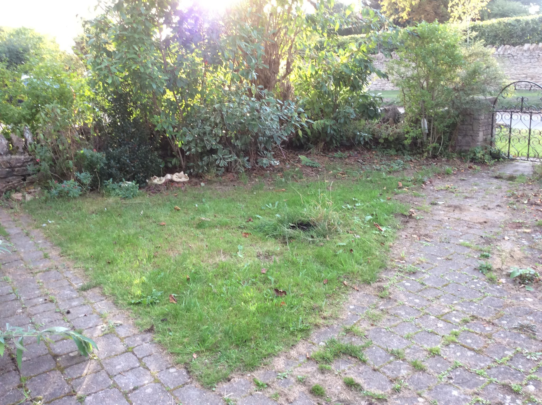 empty front garden , first ca , park on the right hand side, near the gate, right against the bushed at the front