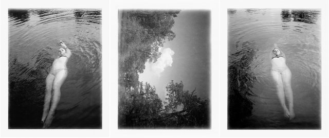 Mayfly-triptych.jpg